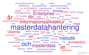 masterdata Tag cloud